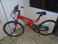 raliegh madd max mountain bike