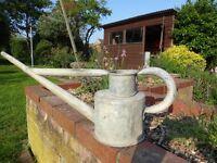 Galvanised Vintage Long Reach watering can