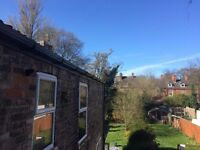 Room to let in shared house off Princes Ave - Bills included!