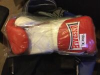 Brand new Lonsdale Pro 10oz gloves and Lrg Groin Guard