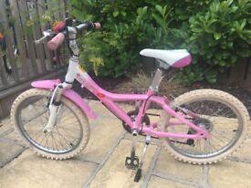 Girls Giant bike