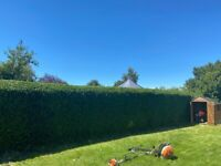 The Green Co. Landscaping and Gardening - Gardening Service Bristol - Garden Maintenance - Fencing