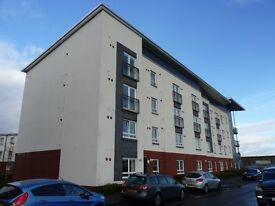 1 Bedroom flat, fully furnished, Braehead area - professional tenants only