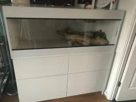 4ft vivarium