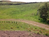 Smallholding with 7 acres equestrian grazing for sale