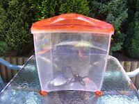 Pets @ home fish tank