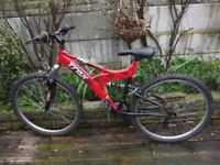Traks Mountain Bike