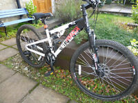 Youths Mountain Bike Full Suspension