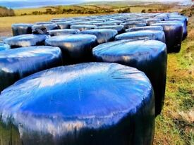 Round bales of silage