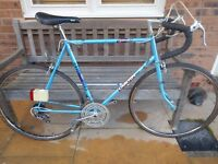 bargain original Carlton Road Bike - new tyres and brakes, ready to use
