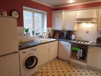 Double room to rent in Docklands