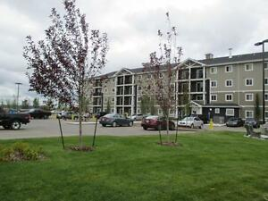 Newer 2 Bd w/ In-Suite Laundry, Dishwasher & Balcony ~South West