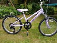 "Girls lovely mauve 20"" wheel lightweight aluminium mountain bike."