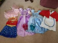 Girls fancy dress 5-6