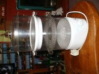ELECTRIC STEAMER.