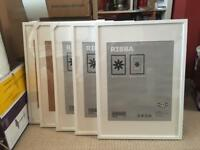 5x IKEA RIBBA 50x70 cm Frames - White