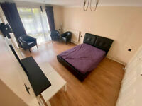 1 bedroom SE5 , DSS Welcome