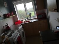 Swap, flat for a house gosforth area