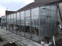 24' x 8' Aluz Lean-to Greenhouse compete with staging