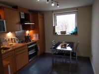 Doubleroom in central Edinburgh available from End of Feb (Female professionals only)
