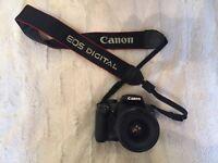 Canon EOS 1000D + 28-80mm + 55-250mm Lenses