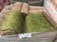 Real Grass Rolls 150m2 MUST GO ASAP £220, CONTRACT ORDER WHICH GOT CANCELED, Retail worth £650