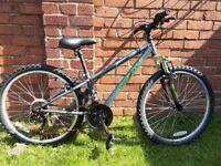 """Apollo Switch Junior Mountain Bike - 24"""" Wheel"""