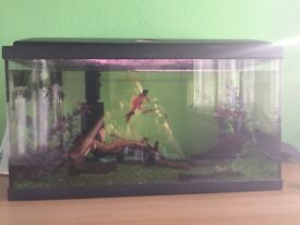 Fish tank in a very good condition