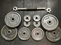Adjustable cast iron plate dumbbell 27kg
