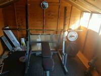 Bench press/squat rack
