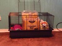 Small rabbits cage and equipment ( sold )