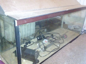 3 foot fish tank with filter and hood