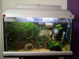 60 ltr tank with stand