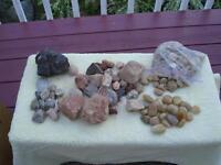 lot de roches idéal pour collectionneur