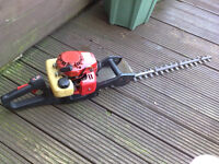 PETROL HEDGE TRIMMERS LONG REACH BLADE TYPE.