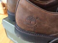 Men's Timberland Shoes (11, Dark Brown)
