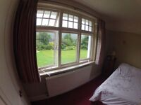 Large room to rent in lovely village setting approx 7 miles west Exeter. £100/wk bills included