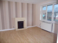 Very nice 1 bedroom flat in Blackheath dss acceptable with the guarantor