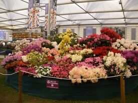 Nursery Team Worker. Production and sales of a wide range of specialist plants