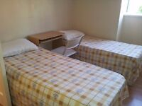 **EXCELLENT ROOM SHARE**ROMAN ROAD**JUST TWO WEEK DEPOSIT**