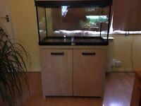 Aquamanta aquarium for sale