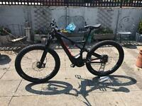 Specialized Levo (electric bike) for rent (Brighton)