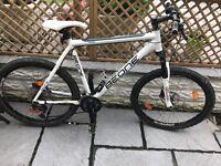 BeOne Mountain bike XL