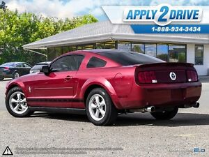 2008 Ford Mustang  Leather, Cold Air, Throttle Spacer, Pypes Edmonton Edmonton Area image 4