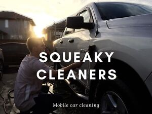 CAR CLEANING AND DETAILING SERVICE