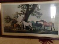 Large horse picture