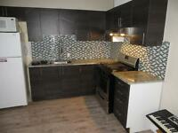 NEWLY RENOVATED 4 BEDROOM UNIT STEPS FROM UOTTAWA