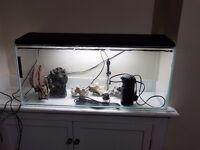 FISH TANK FULL SETUP 3FT 120L
