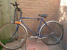 Raleigh Pioneer bicycle with Kryptonite big size D-shape lock (3 kyes)