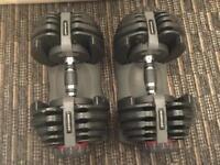 Bowflex dumbells